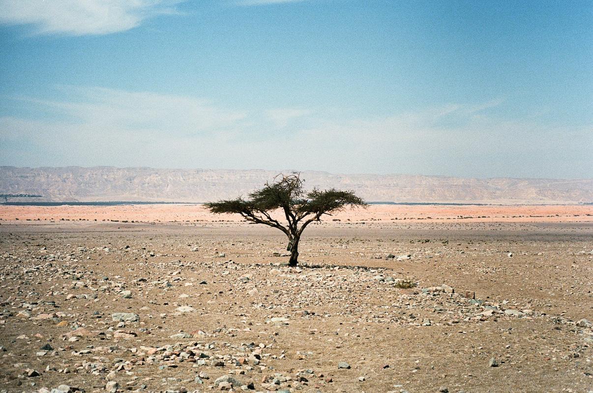 Wadi Araba, Jordan