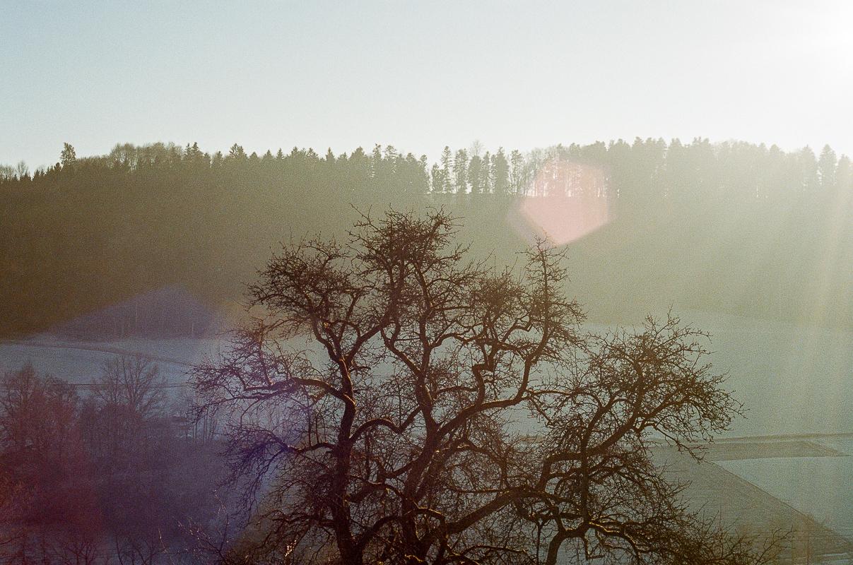 Swabian Forest, Germany